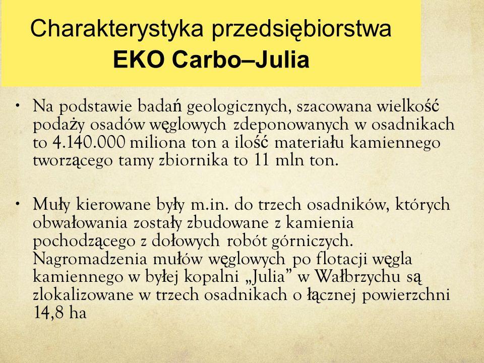 Charakterystyka przedsiębiorstwa EKO Carbo–Julia