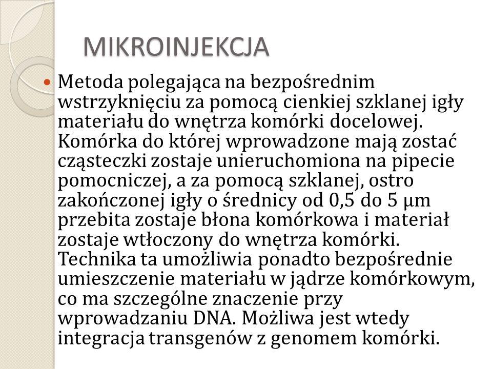 MIKROINJEKCJA