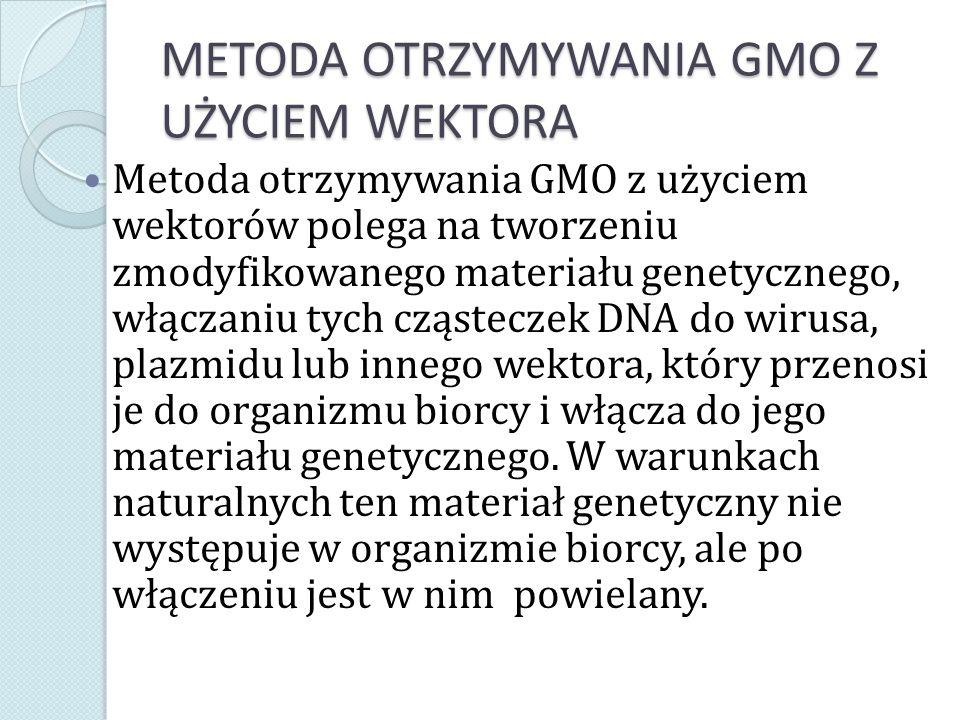 METODA OTRZYMYWANIA GMO Z UŻYCIEM WEKTORA