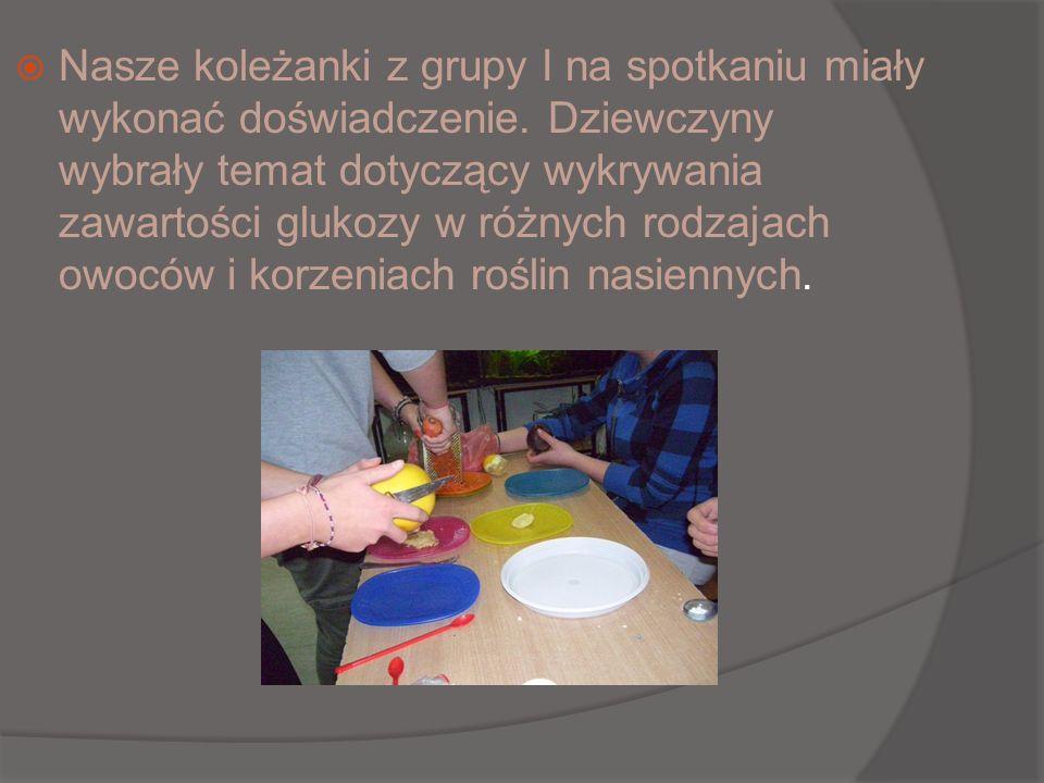 Nasze koleżanki z grupy I na spotkaniu miały wykonać doświadczenie