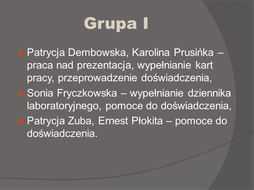 Grupa I Patrycja Dembowska, Karolina Prusińka – praca nad prezentacja, wypełnianie kart pracy, przeprowadzenie doświadczenia,