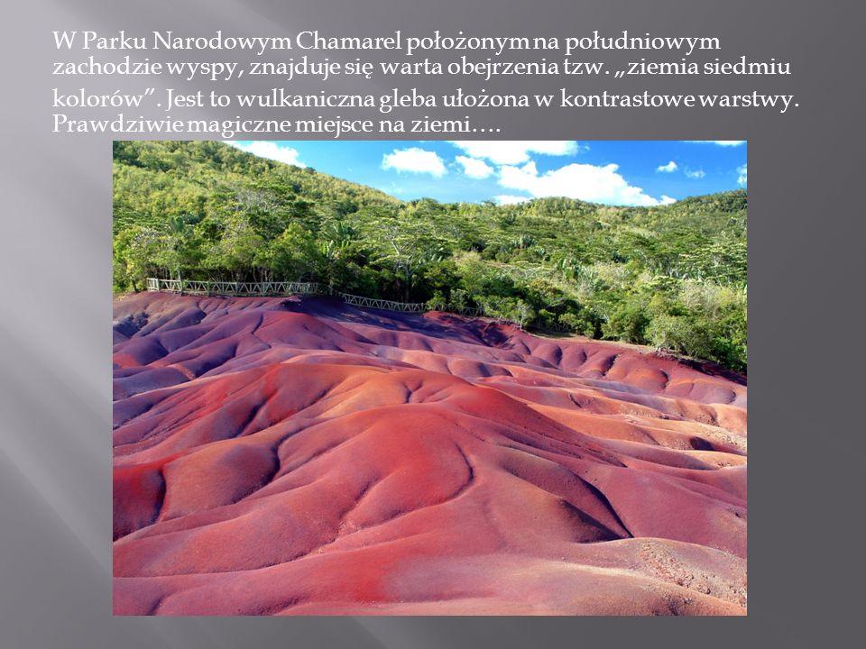 """W Parku Narodowym Chamarel położonym na południowym zachodzie wyspy, znajduje się warta obejrzenia tzw. """"ziemia siedmiu"""
