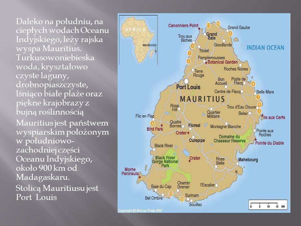 Daleko na południu, na ciepłych wodach Oceanu Indyjskiego, leży rajska wyspa Mauritius. Turkusowoniebieska woda, kryształowo czyste laguny, drobnopiaszczyste, lśniąco białe plaże oraz piękne krajobrazy z bujną roślinnością