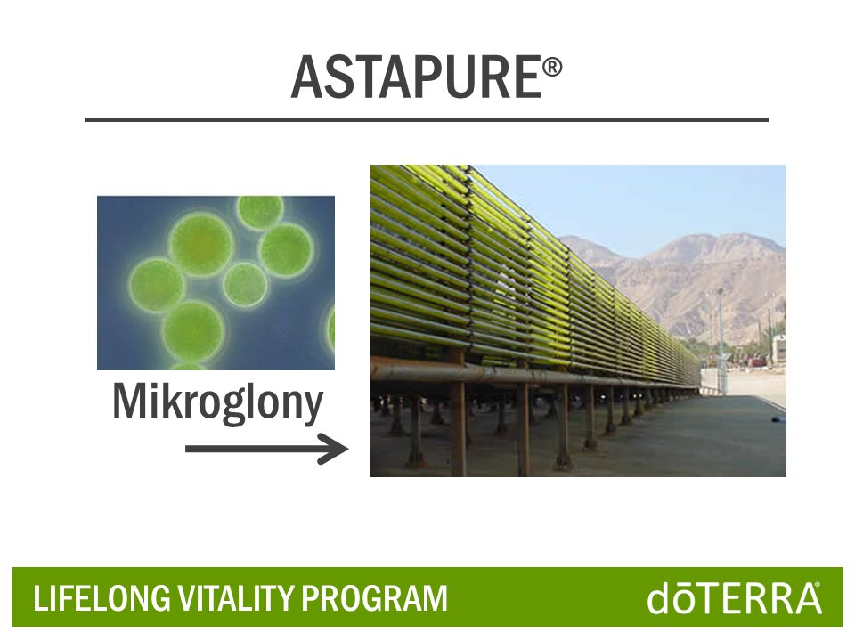ASTAPURE® Mikroglony LIFELONG VITALITY PROGRAM