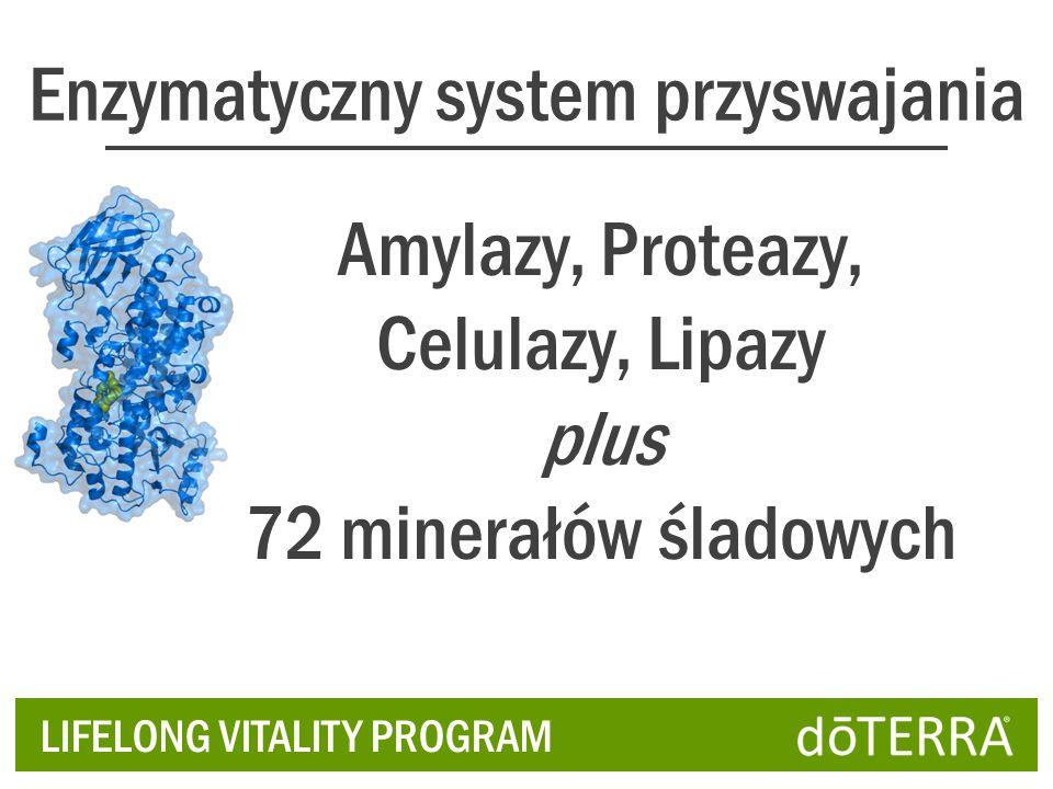 Enzymatyczny system przyswajania