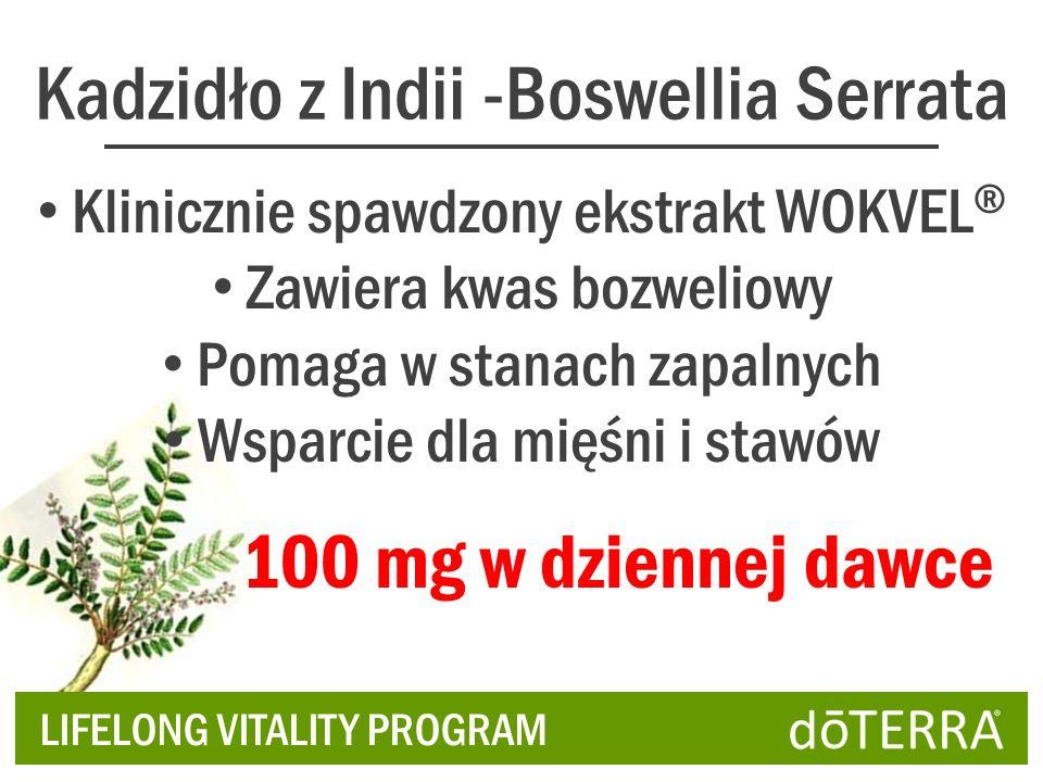 Kadzidło z Indii -Boswellia Serrata