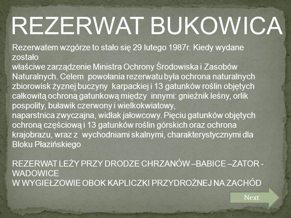 REZERWAT BUKOWICA