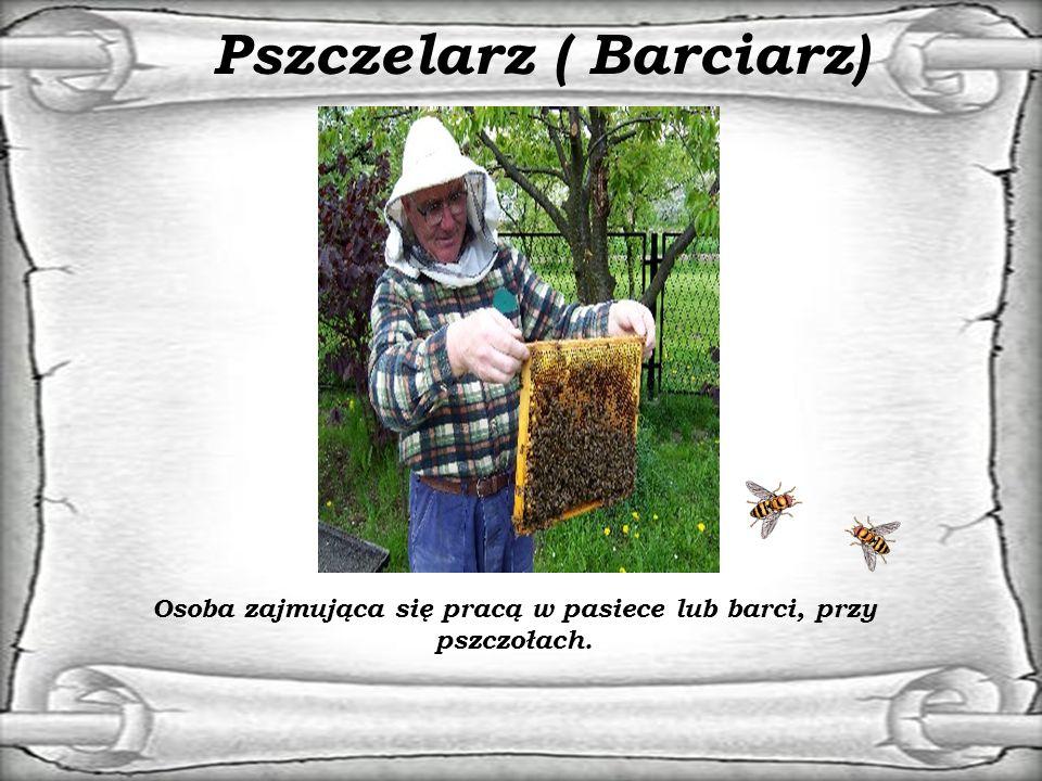 Pszczelarz ( Barciarz)