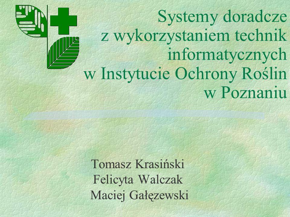 Tomasz Krasiński Felicyta Walczak Maciej Gałęzewski