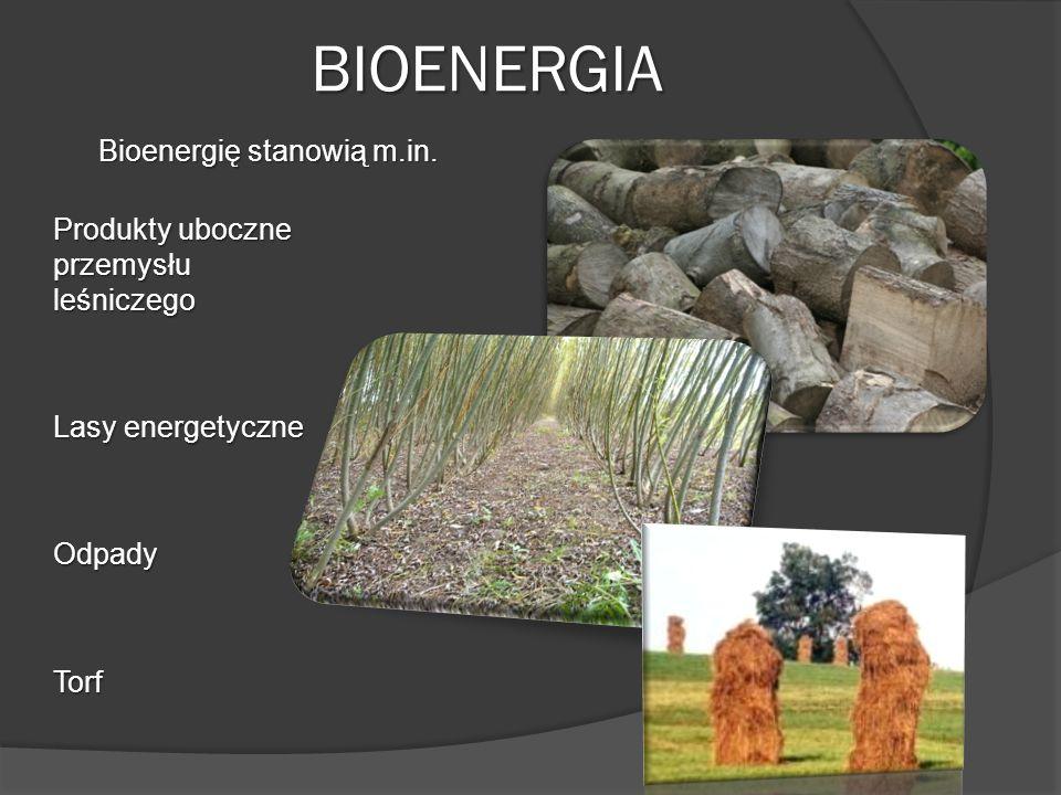 BIOENERGIA Bioenergię stanowią m.in.