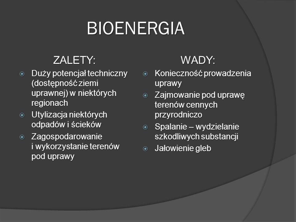 BIOENERGIA ZALETY: WADY: