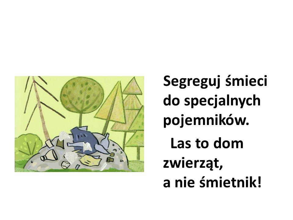 Las to dom zwierząt, a nie śmietnik!