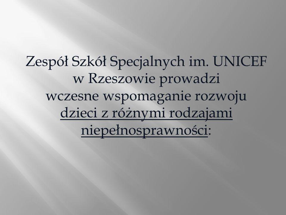 Zespół Szkół Specjalnych im. UNICEF w Rzeszowie prowadzi