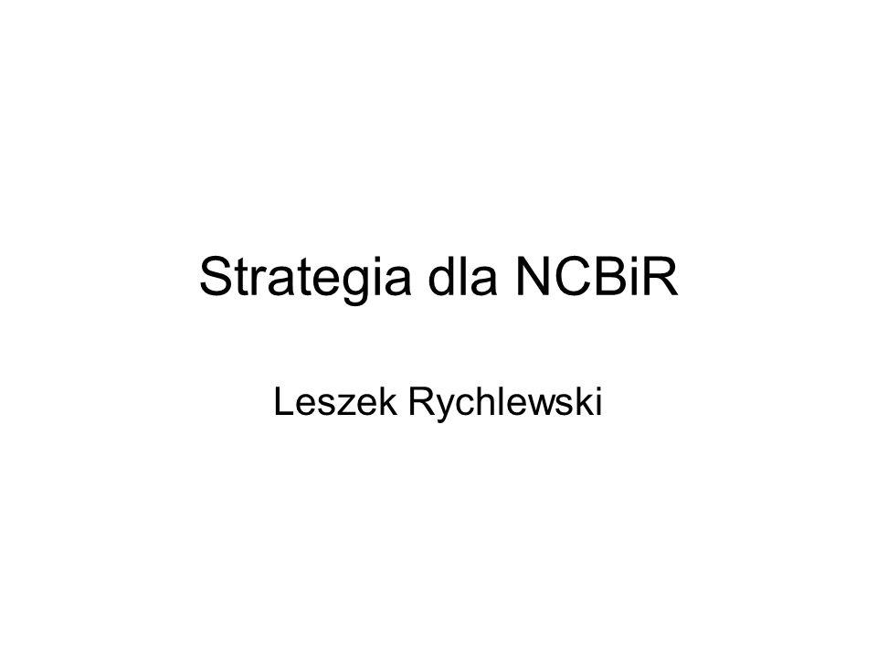 Strategia dla NCBiR Leszek Rychlewski