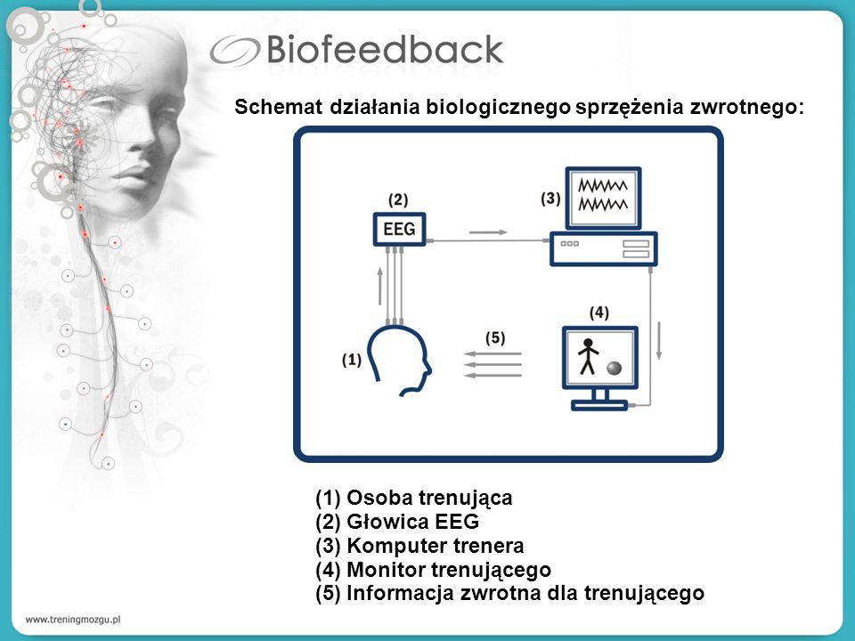 Schemat działania biologicznego sprzężenia zwrotnego: