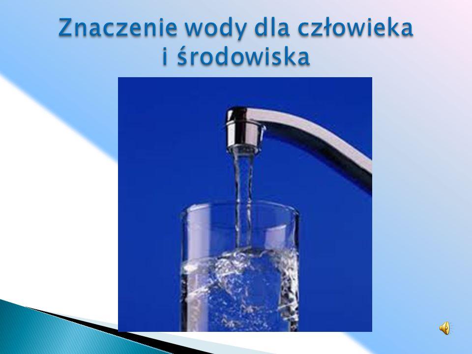 Znaczenie wody dla człowieka i środowiska