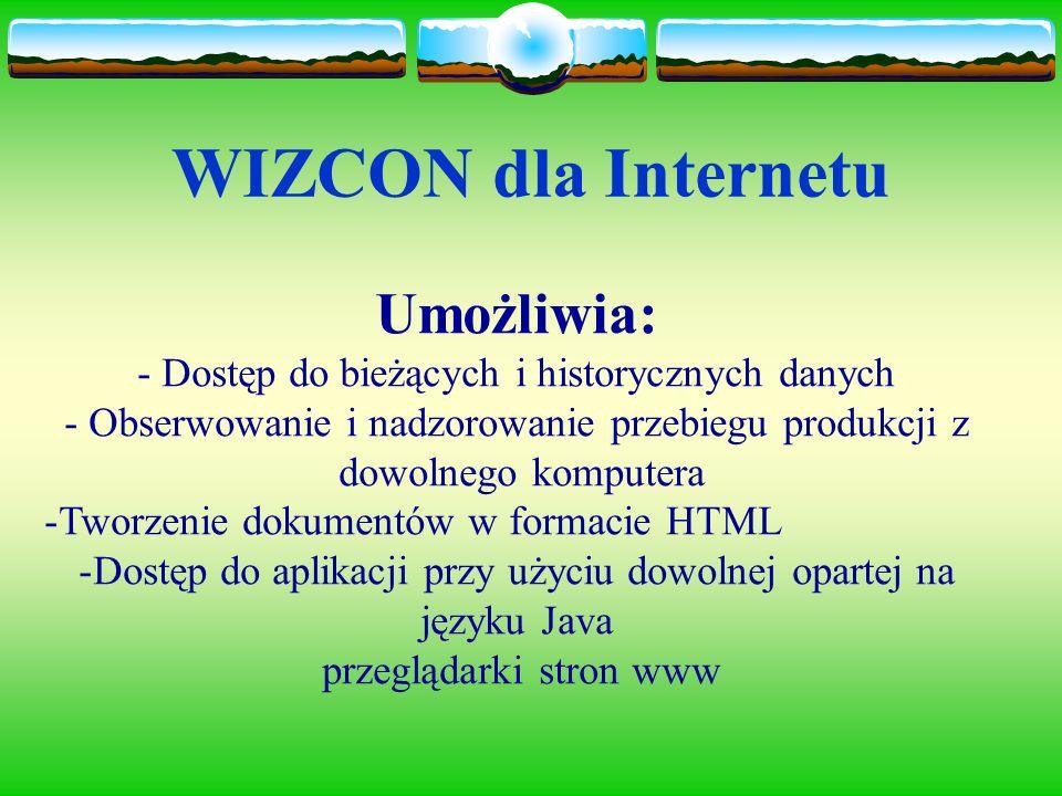 WIZCON dla Internetu Umożliwia: