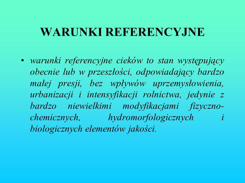 WARUNKI REFERENCYJNE