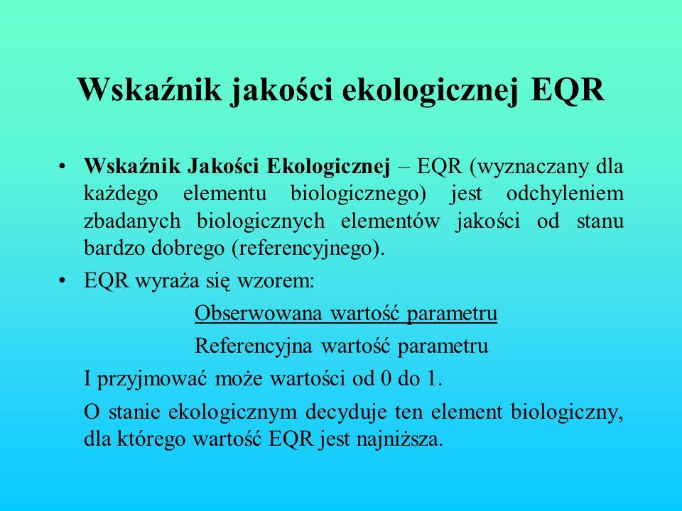 Wskaźnik jakości ekologicznej EQR