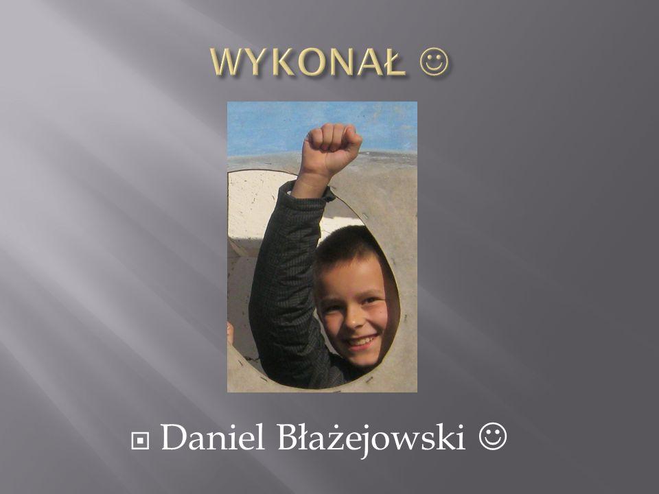 WYKONAŁ  Daniel Błażejowski 
