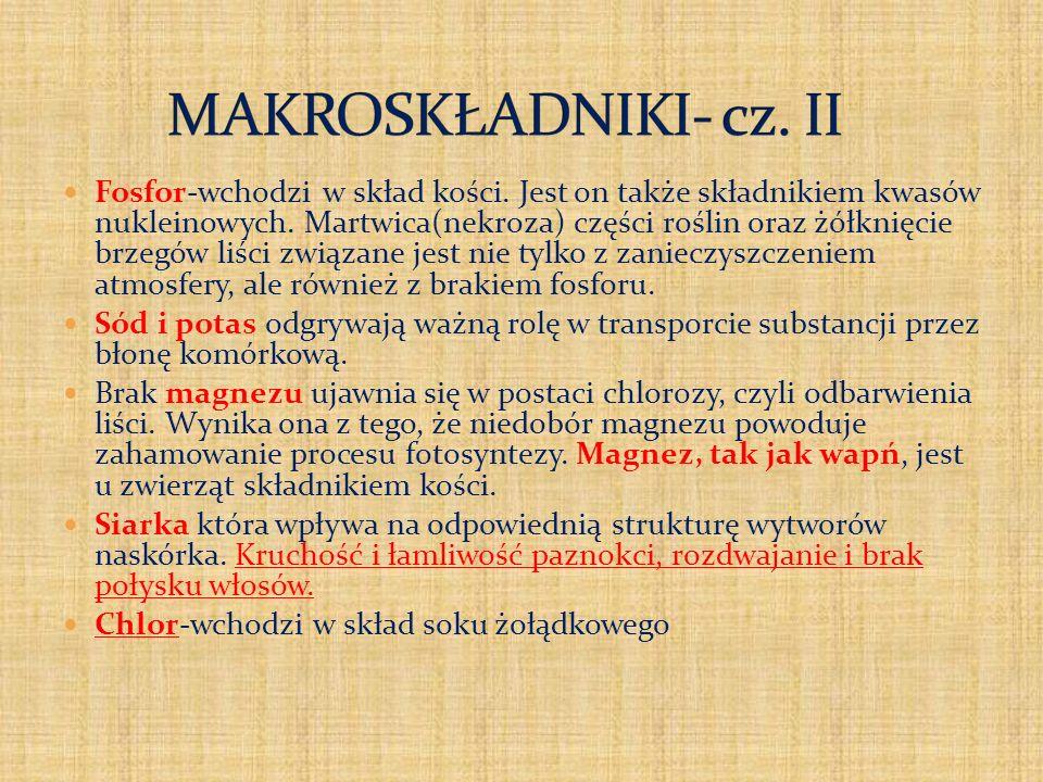 MAKROSKŁADNIKI- cz. II