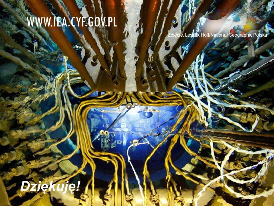 www.iea.cyf.gov.pl Dziękuję!