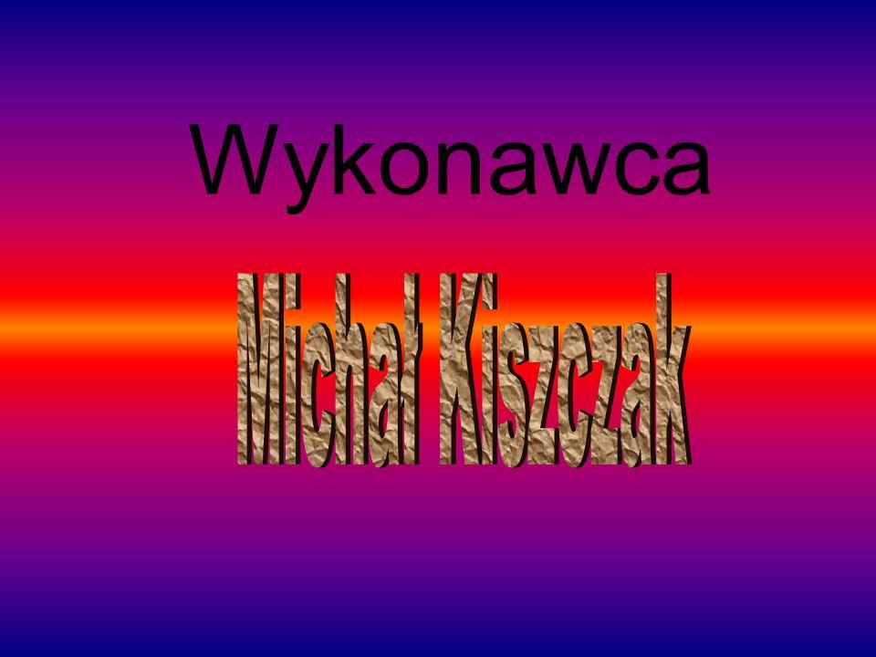 Wykonawca Michał Kiszczak