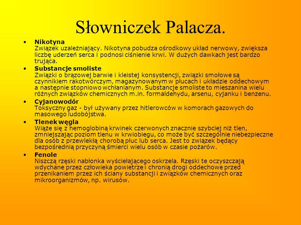 Słowniczek Palacza.