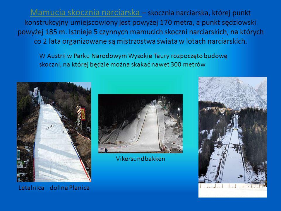 Mamucia skocznia narciarska – skocznia narciarska, której punkt konstrukcyjny umiejscowiony jest powyżej 170 metra, a punkt sędziowski powyżej 185 m. Istnieje 5 czynnych mamucich skoczni narciarskich, na których co 2 lata organizowane są mistrzostwa świata w lotach narciarskich.