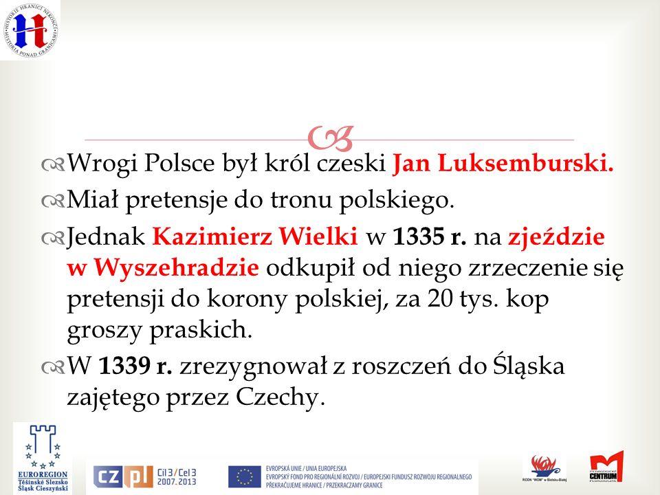 Wrogi Polsce był król czeski Jan Luksemburski.