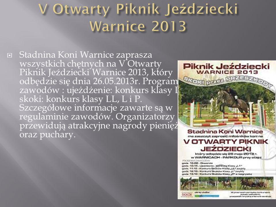 V Otwarty Piknik Jeździecki Warnice 2013