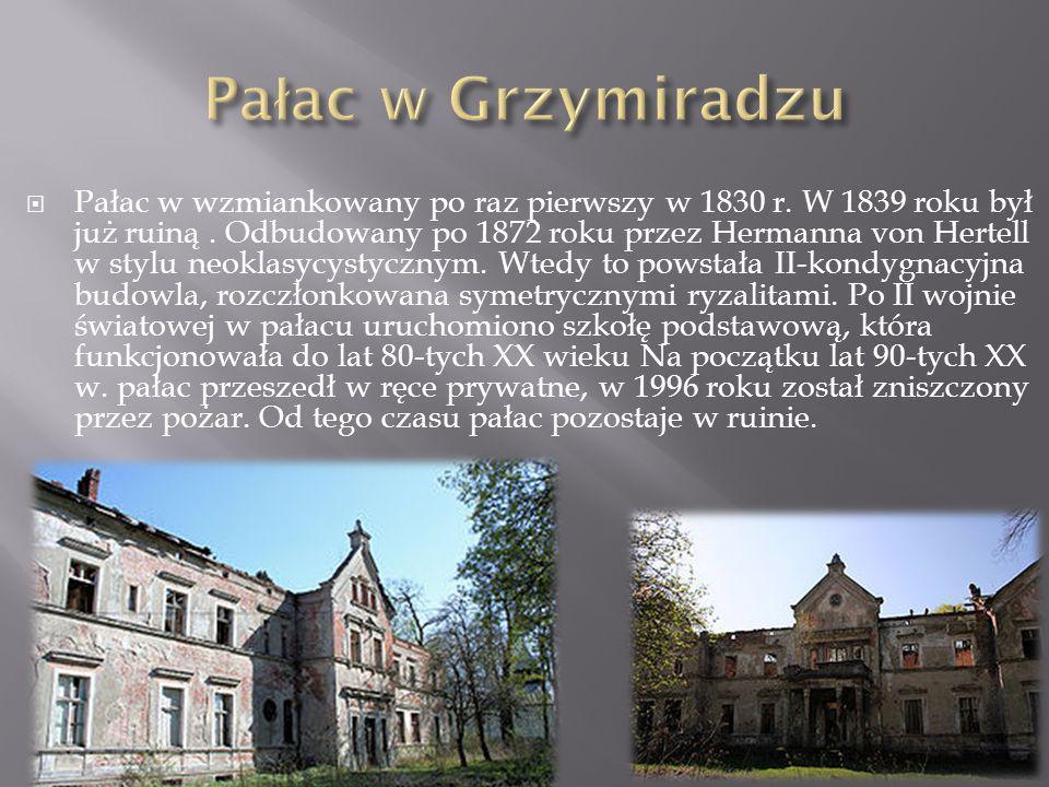 Pałac w Grzymiradzu