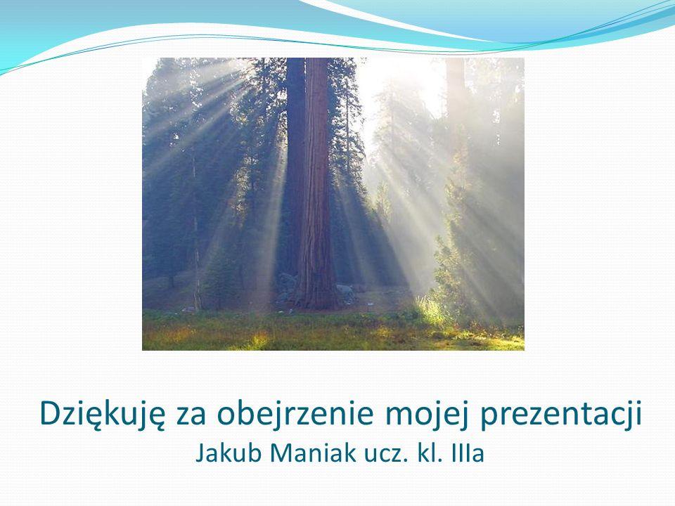 Dziękuję za obejrzenie mojej prezentacji Jakub Maniak ucz. kl. IIIa