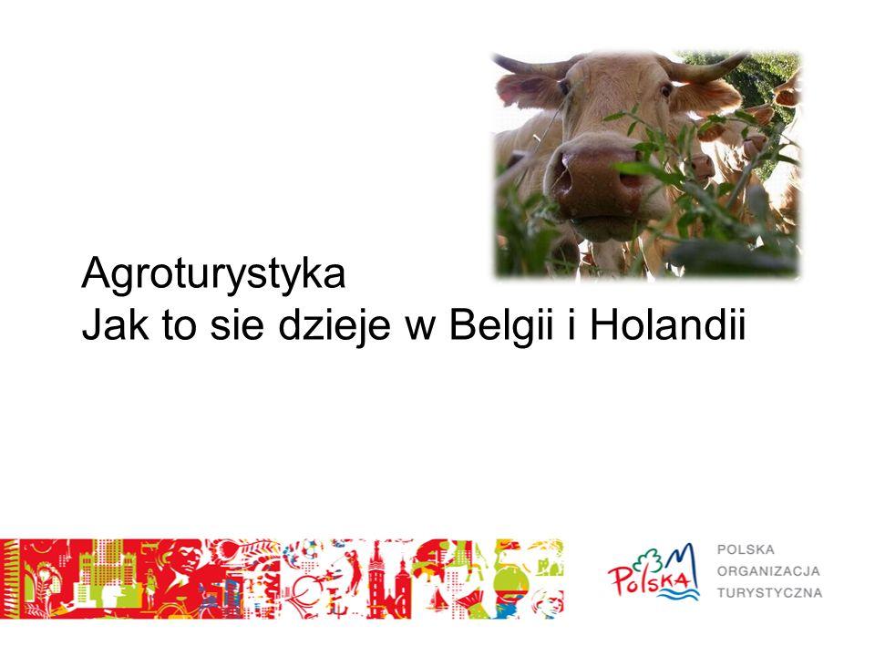 Agroturystyka Jak to sie dzieje w Belgii i Holandii