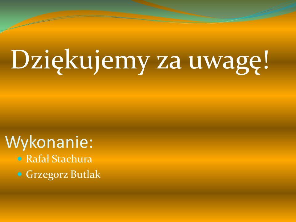 Dziękujemy za uwagę! Wykonanie: Rafał Stachura Grzegorz Butlak