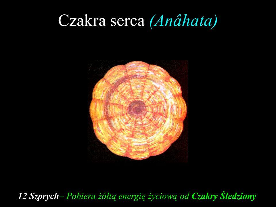 Czakra serca (Anâhata)
