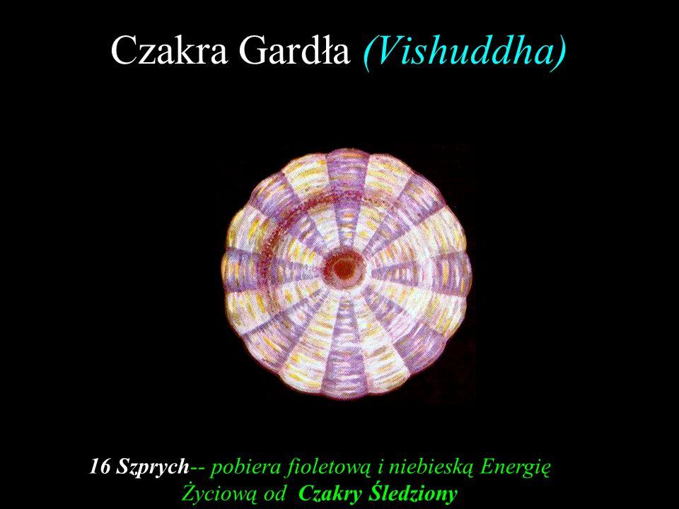 Czakra Gardła (Vishuddha)