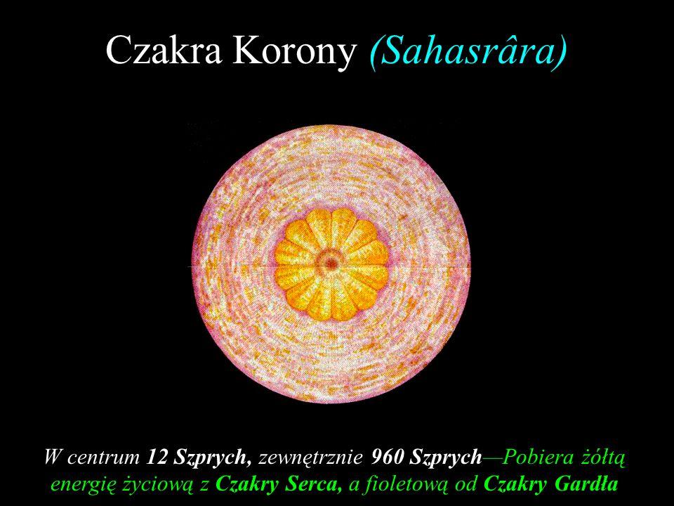 Czakra Korony (Sahasrâra)