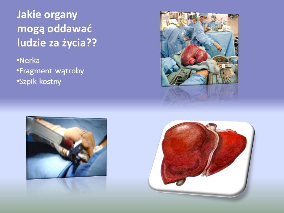 Jakie organy mogą oddawać ludzie za życia