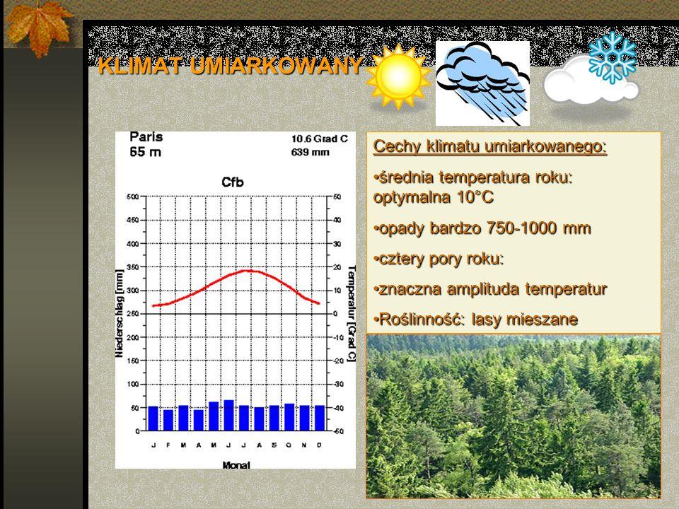 KLIMAT UMIARKOWANY Cechy klimatu umiarkowanego: