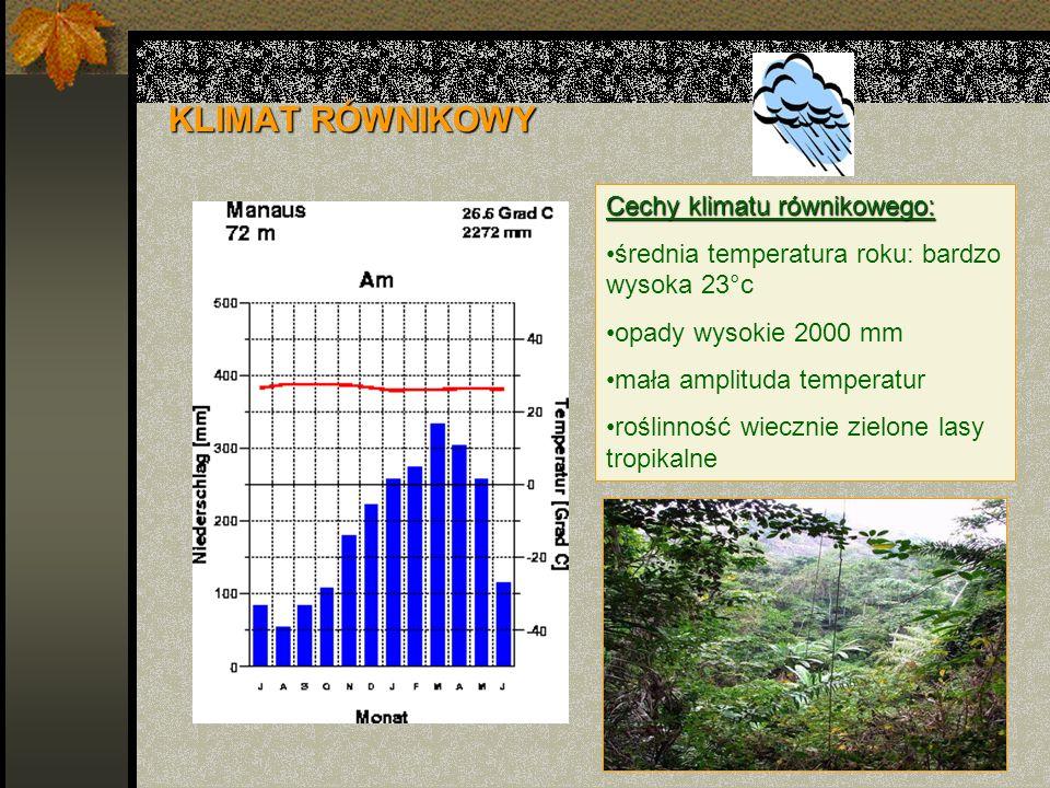 KLIMAT RÓWNIKOWY Cechy klimatu równikowego: