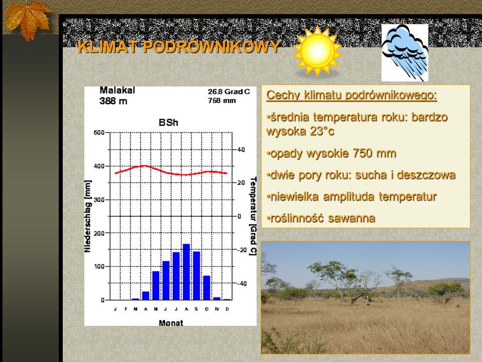 KLIMAT PODRÓWNIKOWY Cechy klimatu podrównikowego: