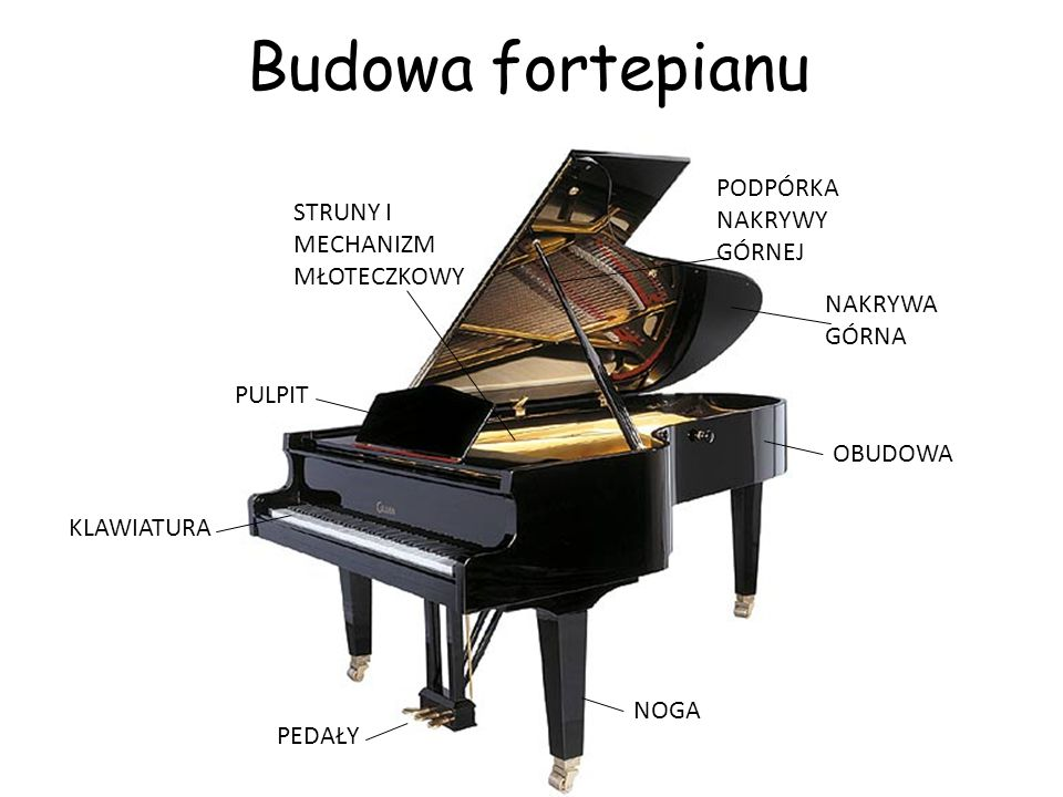 Budowa fortepianu PODPÓRKA NAKRYWY GÓRNEJ