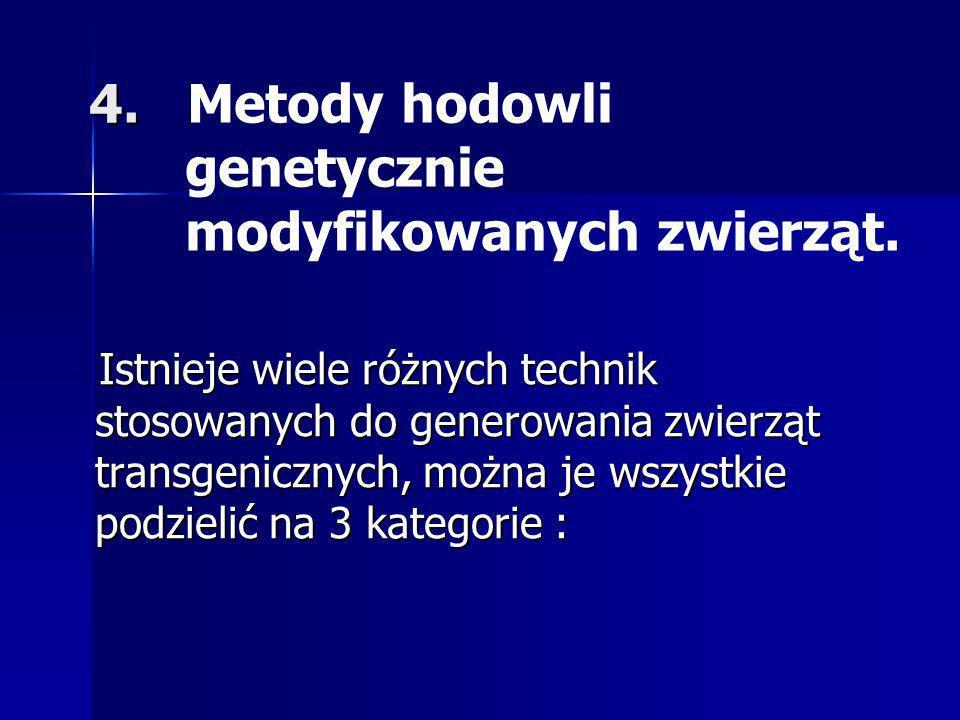 4. Metody hodowli genetycznie modyfikowanych zwierząt.