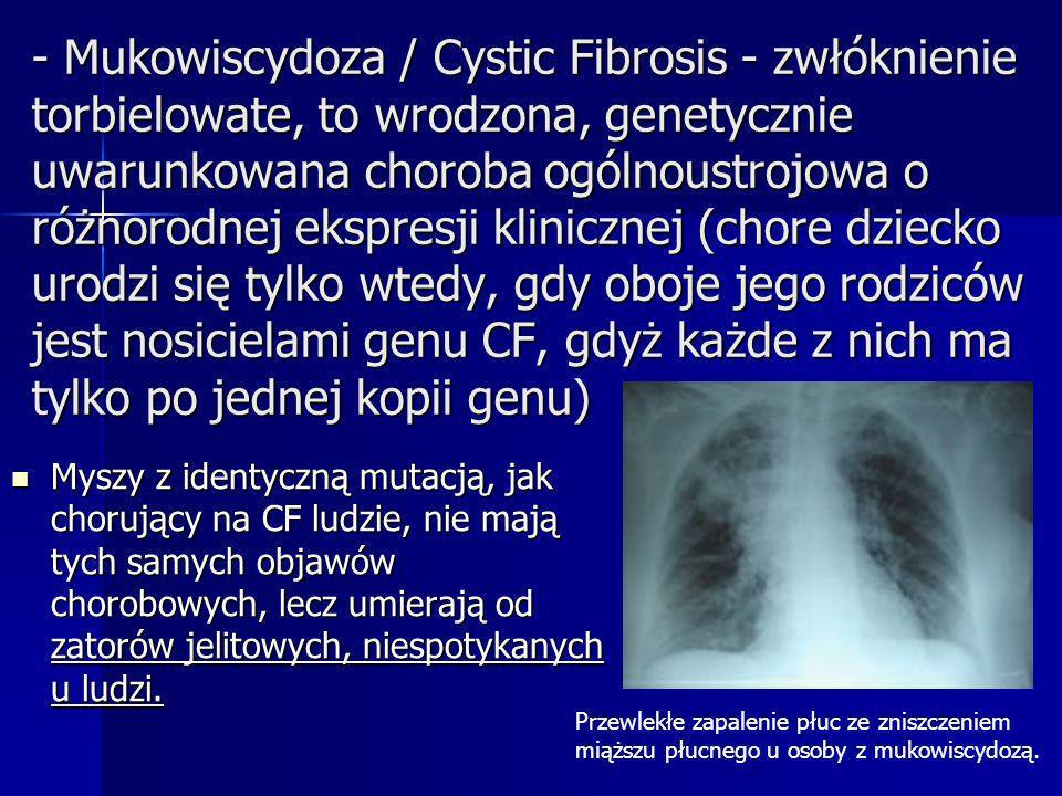 - Mukowiscydoza / Cystic Fibrosis - zwłóknienie torbielowate, to wrodzona, genetycznie uwarunkowana choroba ogólnoustrojowa o różnorodnej ekspresji klinicznej (chore dziecko urodzi się tylko wtedy, gdy oboje jego rodziców jest nosicielami genu CF, gdyż każde z nich ma tylko po jednej kopii genu)