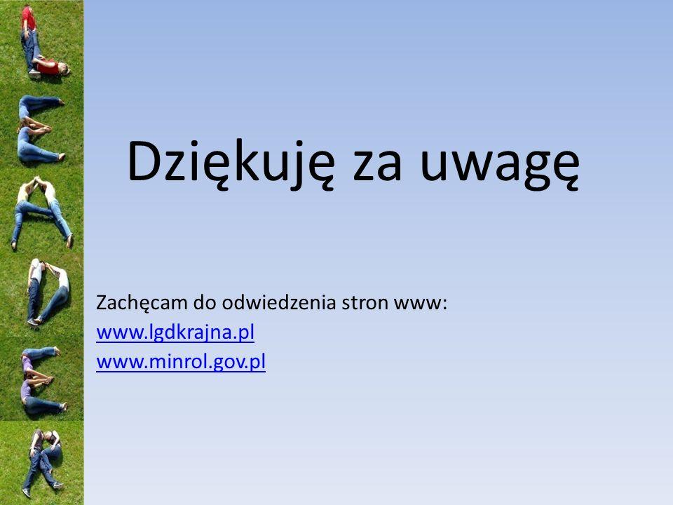 Dziękuję za uwagę Zachęcam do odwiedzenia stron www: www.lgdkrajna.pl