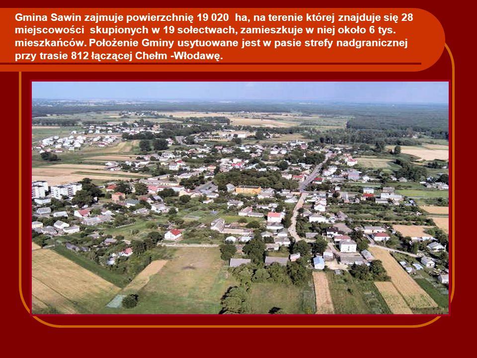 Gmina Sawin zajmuje powierzchnię 19 020 ha, na terenie której znajduje się 28 miejscowości skupionych w 19 sołectwach, zamieszkuje w niej około 6 tys.