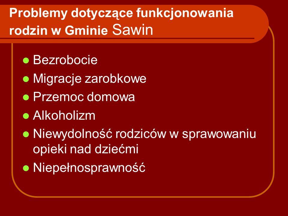 Problemy dotyczące funkcjonowania rodzin w Gminie Sawin