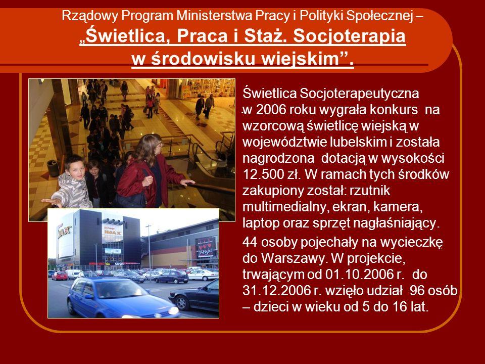 """Rządowy Program Ministerstwa Pracy i Polityki Społecznej – """"Świetlica, Praca i Staż. Socjoterapia w środowisku wiejskim . ."""