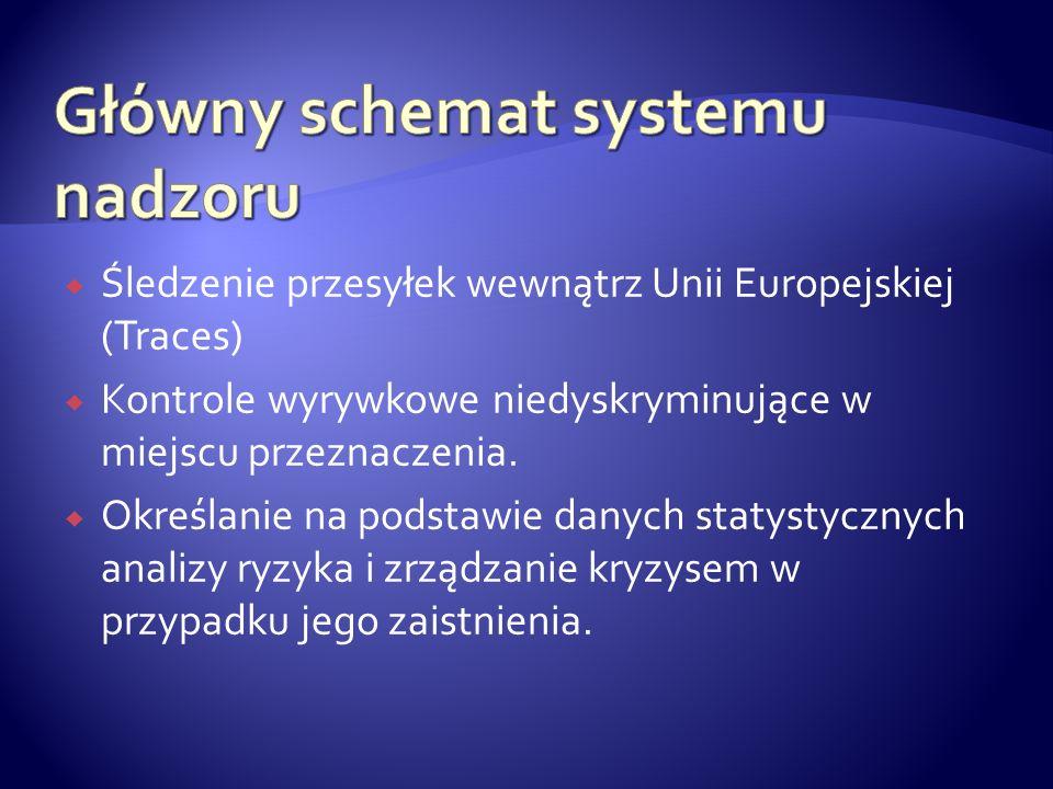 Główny schemat systemu nadzoru